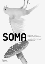 StudioPalissa_Protokoll_VFN_SOMA_Titel01